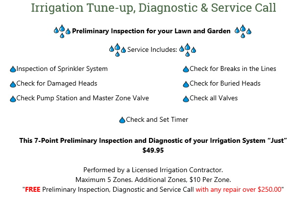 Irrigation Tuneup Special